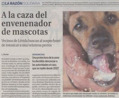 Espagne-chiens