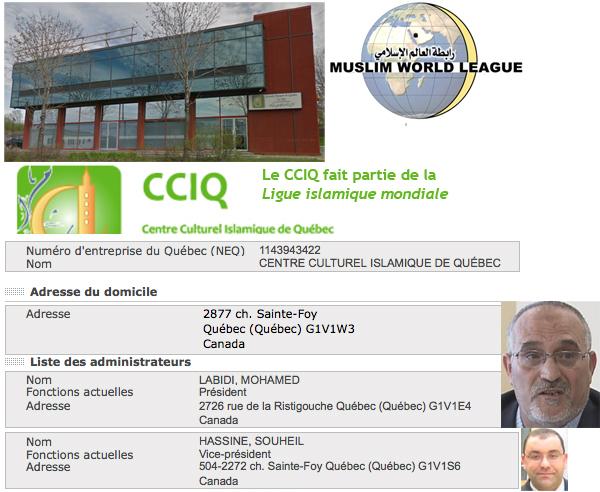 CCIQ_admin