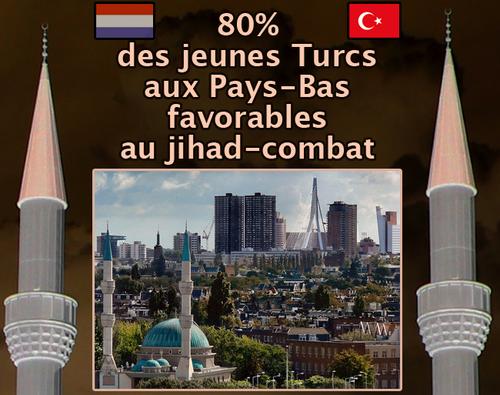 Pays_bas6